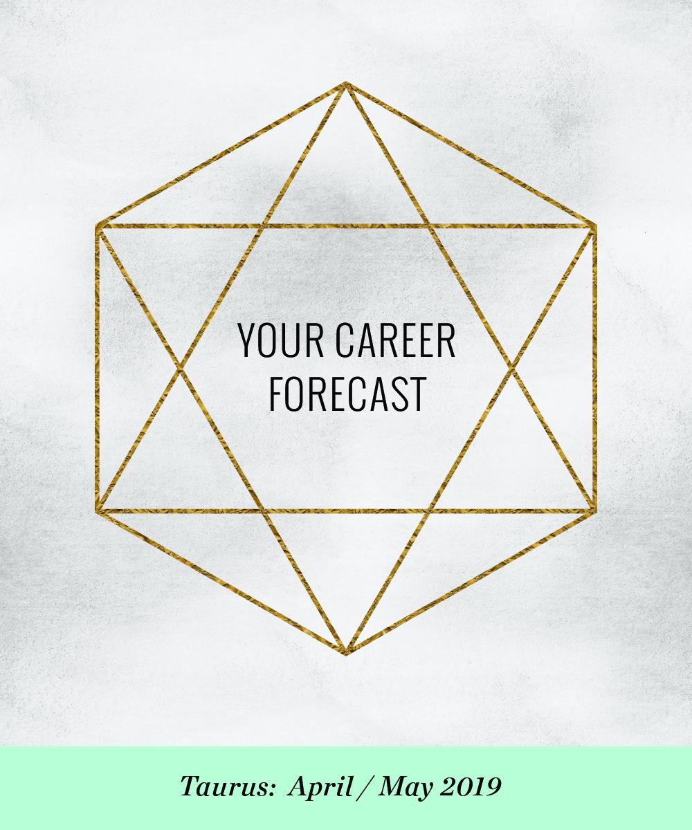 Career Forecast | Ellen Fondiler